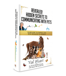 Secrets to Communicating with Animals